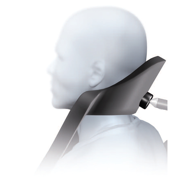 Whitmyer Heads Up Headrest System