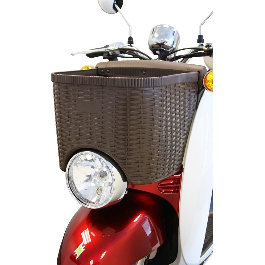 EW 11 Euro Recreational Scooter