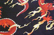 Custom Fabric: Dragon