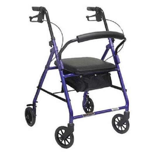 "ProBasics Rollator with 6"" Wheels"